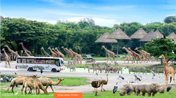 Safari-World